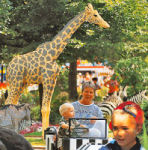 Legoland, giraffe in safari land, Asbjorn Lonvig
